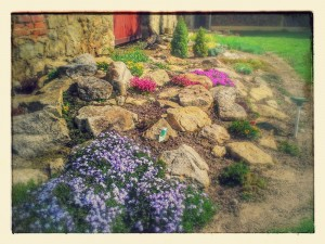 20150427_102716-EFFECTS